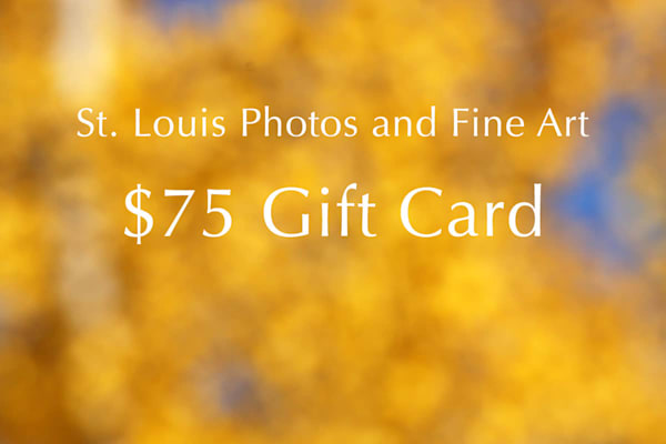 $75 Gift Card | Moore Design Group