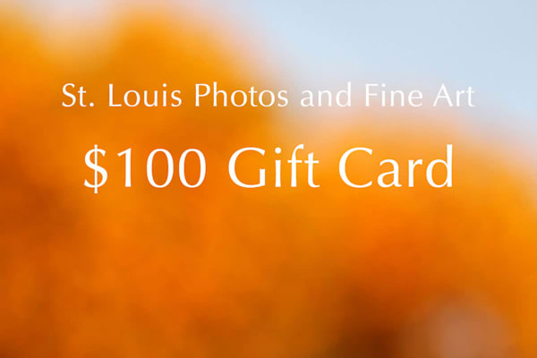$100 Gift Card | Moore Design Group