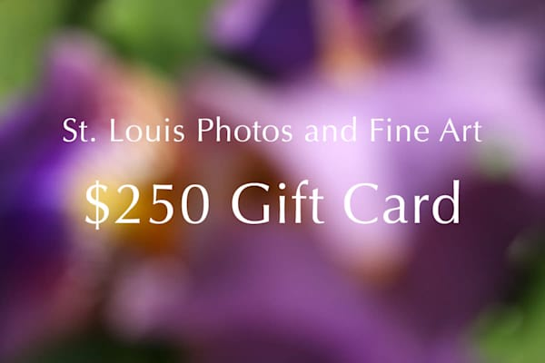 $250 Gift Card