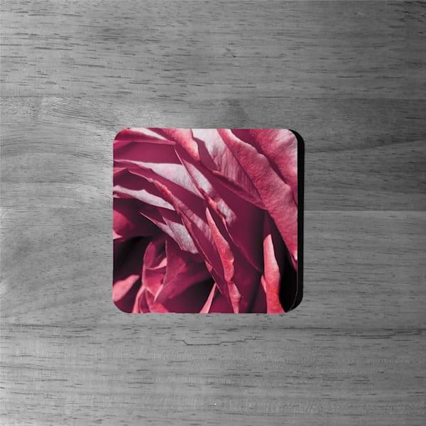 ART: A Flower Named Rose