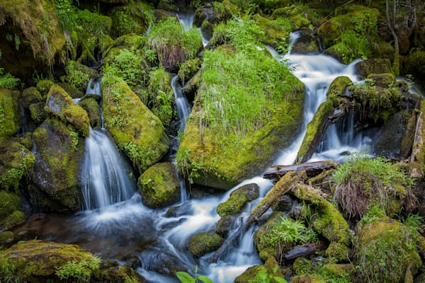 Mossy boulders and water