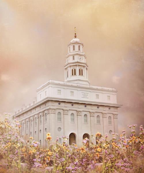 "Nauvoo Temple ""Vision"" Art | Mandy Jane Williams Art"