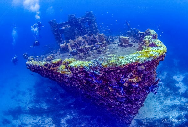 Jayne C Shipwreck Aruba Photography Art | vitopalmisano