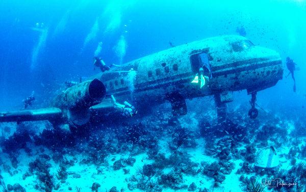 Trupial Plane Wreck Aruba Now Boarding Photography Art | vitopalmisano
