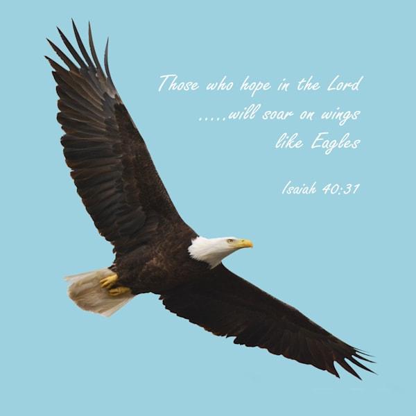CAdams Soaring Eagle Scripture