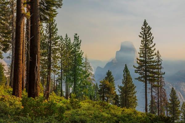 Yosemite Panorama Trail 1 Photography Art   Mark Steele Photography Inc
