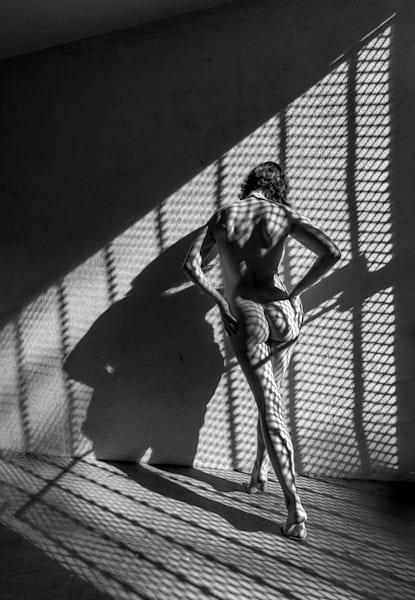 Olive Nude Shadows 1 Photography Art   Dan Katz, Inc.