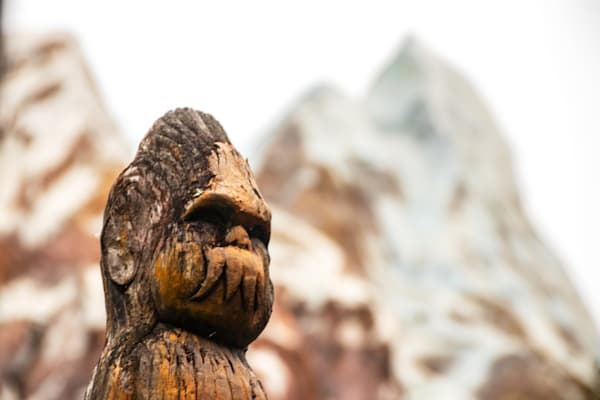 Expedition Everest Carvings - Disney Framed Prints   William Drew Photography
