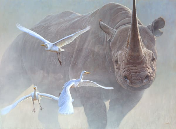 Lahaina Art Gallery features wildlife painitngs by Artist John Banovich