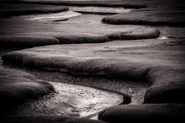 Natural Abstract - black and white photograph print of California estuary