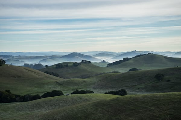 Wilson Hill -  Petaluma country morning sunrise photograph print