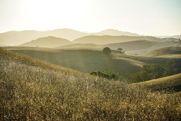 Golden Hills - Summer afternoon California photograph print