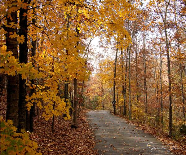 Jstoner Glorious Autumn