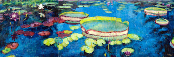Print Longwood Waterlilies Triptych  Art | Monique Sarkessian Fine Art Gallery and Studio