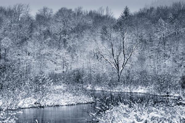 Moose River Winter 2020 V2 Photography Art | Kurt Gardner Photogarphy