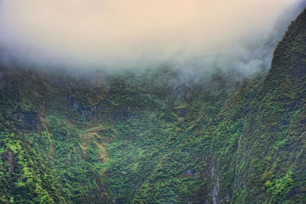 Into The Iao Valley Fog