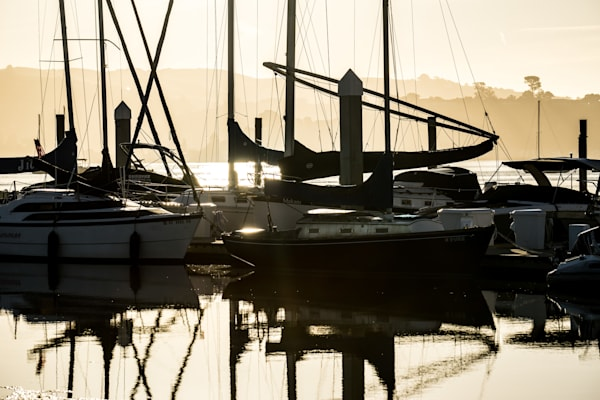 Sleeping Sailboats - Sausalito California marina sunrise photograph print