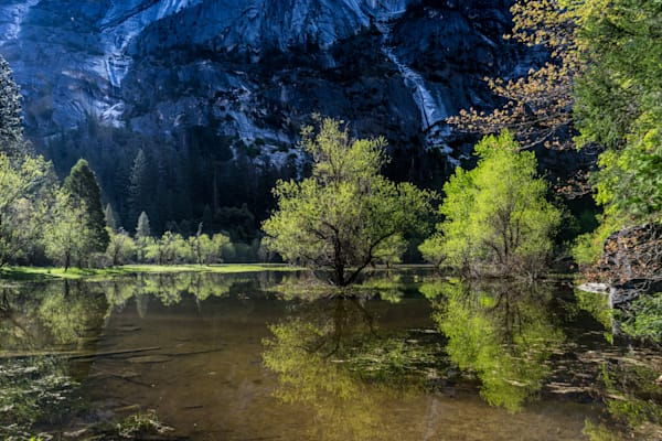 Mirror Lake - Spring Yosemite National Park photograph print