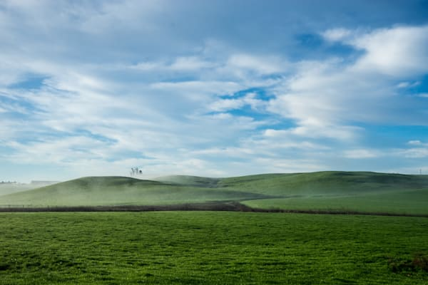 Spring in the Country - Petaluma California country landscape photograph print