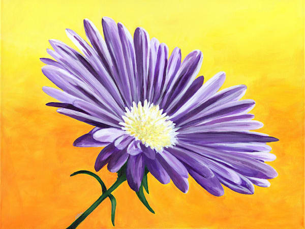 """Enchanted"", an acrylic painting of a single purple Aster flower by artist Mary Anne Hjelmfelt"