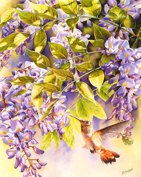 Wisteria and Hummer original watercolor painting