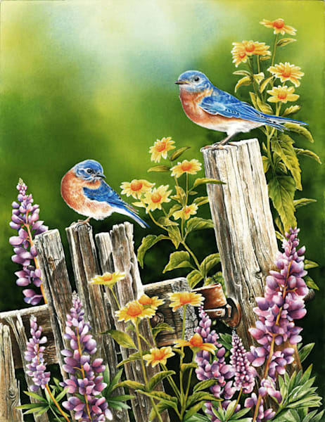 Bluebird Morning original watercolor painting, Painted on Arches 300# bright white watercolor paper.