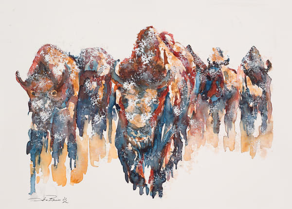 Snow Bison Art by debrabrunerstudio