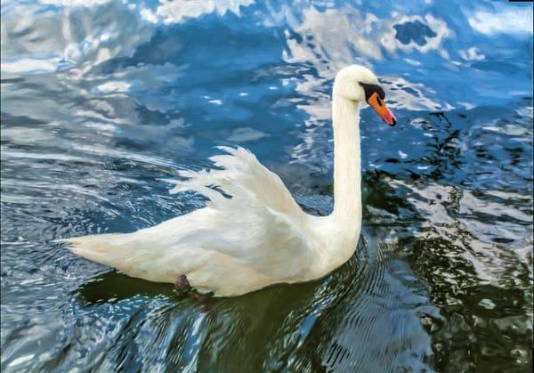JStoner-painted-swan-in-habitat