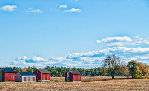 Ontario Drying Sheds
