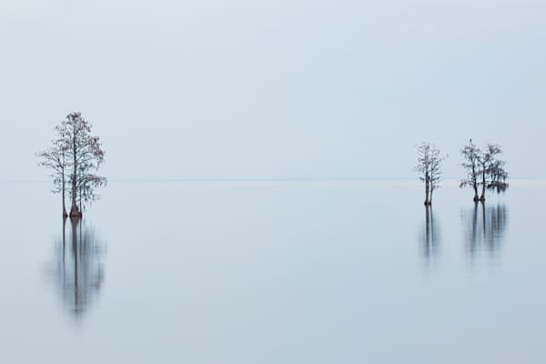 Lake Moultrie in Fog