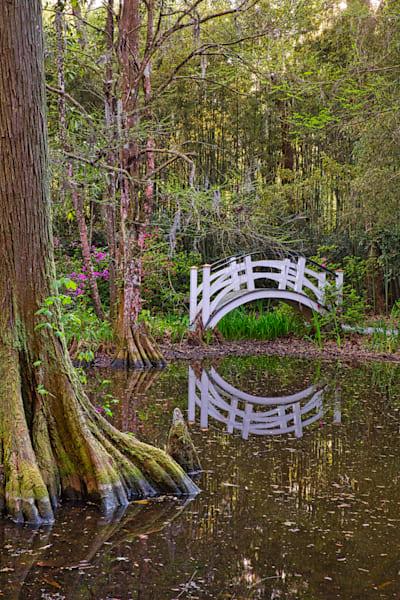 Plantation Reflection, bridge reflection at Magnolia Plantation
