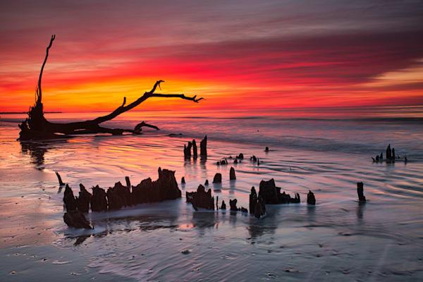 Botany Bay Sunrise, Edisto Island