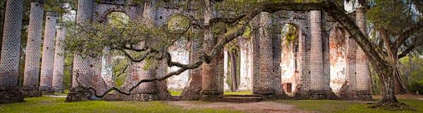 Old Church Oak - Sheldon, South Carolina