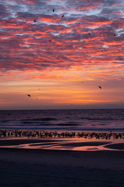 Sunrise, Beach, and Sky - shop fine art prints | Closer Views