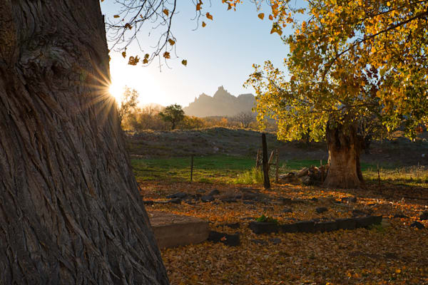 Fall In Grafton Ghost Town, Rockville Utah