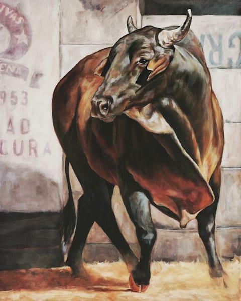 Bull In Costa Rica Art | Joan Frimberger Fine Art