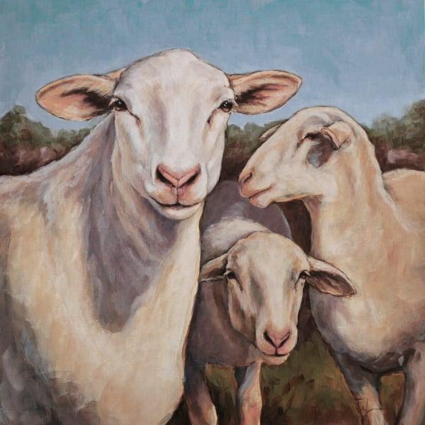 Ewe Talkin To Me Art | Joan Frimberger Fine Art