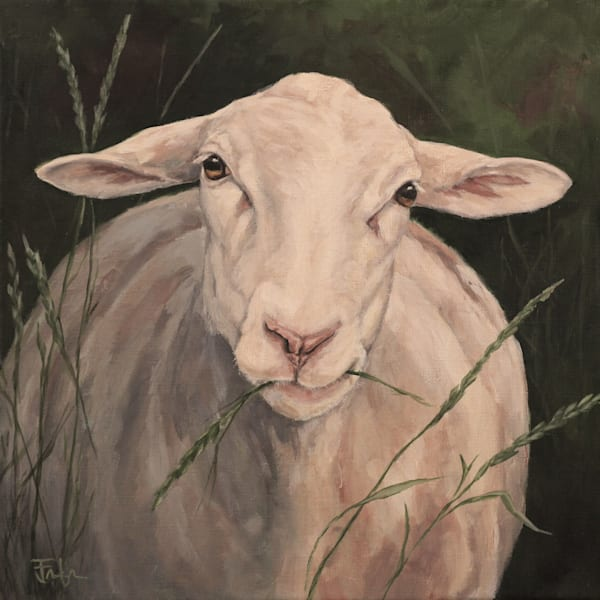 Ewe Eating Grass Art | Joan Frimberger Fine Art