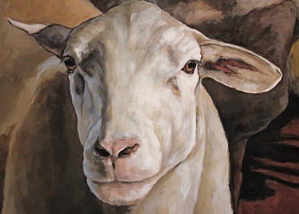 Ewes In The Paddock Detail Art | Joan Frimberger Fine Art