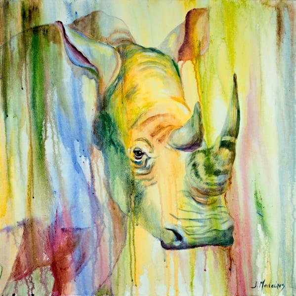Rhino Of Timbavati Art | J. Medeiros Fine Art