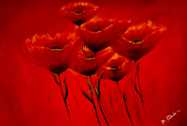 Re on Red Poppies