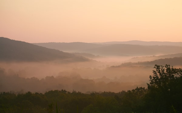 PBuzenius-Ozark-Morning-Fog
