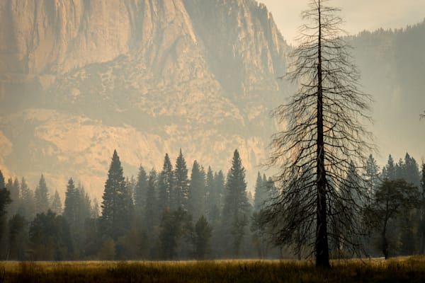 Smoky Haze in Yosemite - California landscape photograph print