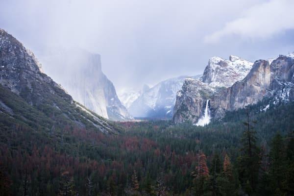 Yosemite Winter - Yosemite National Park California landscape photograph print