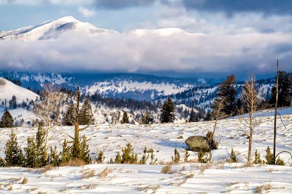 Yellowstone Winterscape