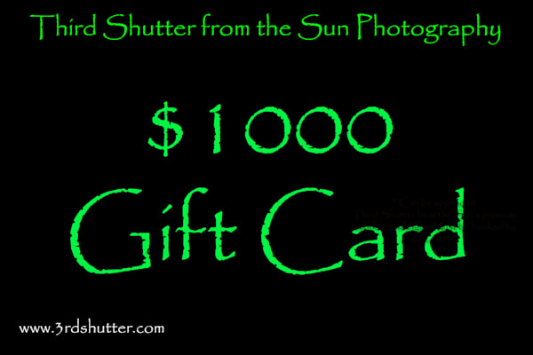 $1000 Gift Card | Third Shutter from the Sun Photography
