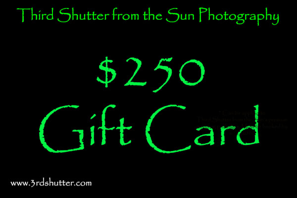 $250 Gift Card | Third Shutter from the Sun Photography