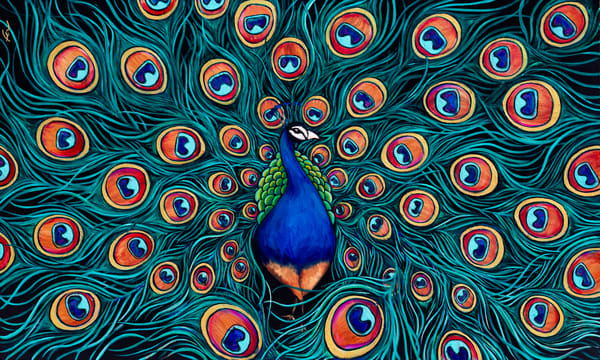 Peacock Painting | Fer Caggiano Art