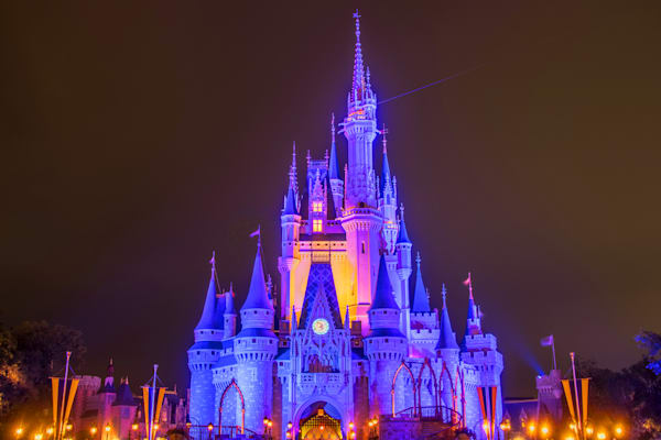 Cinderella's Castle at Night 1 - Buy it Now