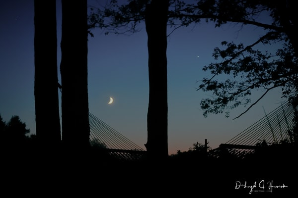 Hammock, night, moon, photography, art